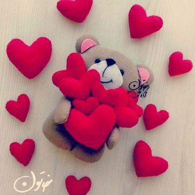 خرس نمدی عاشق