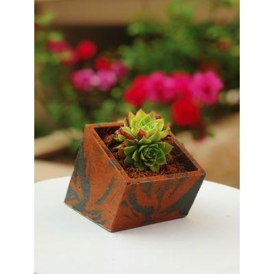 گلدان مربع کج