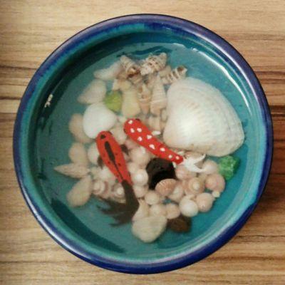 حوض ماهی رزینی